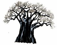 Giardino Baobab