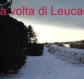 Leucade